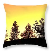 Radiance Of Nature Throw Pillow