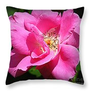 Radiant In Pink - Rose Throw Pillow