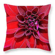 Radiant In Red - Dahlia Throw Pillow