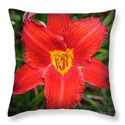 Radiant In Red - Daylily Throw Pillow