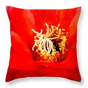 Radiant Red Cactus Flower Throw Pillow
