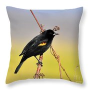 Radiant Red-winged Throw Pillow