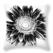 Radiant Solarized Throw Pillow