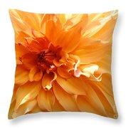 Radiating Orange Dahlia Throw Pillow