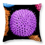 Radiolarian Sem Throw Pillow