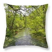 Rafting The Springs Throw Pillow