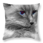 Ragdoll In Black And White Throw Pillow