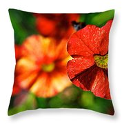 Raggedy Anne Throw Pillow