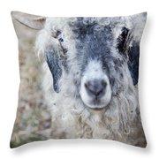 Raggedy Goat Throw Pillow