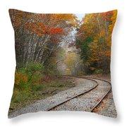 Rail Through The Colors Throw Pillow