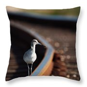 Railroaded Willet  Throw Pillow