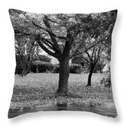 Rain And Leaf Ave In Black And White Throw Pillow