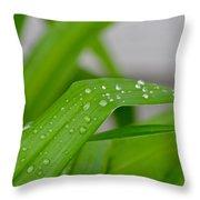 Rain Beads IIi Throw Pillow