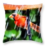 Rain Bird Throw Pillow
