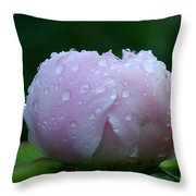 Rain Comes Softly Throw Pillow