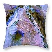 Rain Dancer Throw Pillow