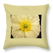 Rain Drenched Yellow Poppy Throw Pillow