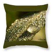 Rain Drop Throw Pillow