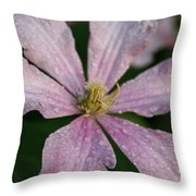 Rain Drops From Heaven Throw Pillow