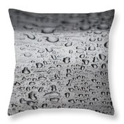 Rain Drops On Stainless Steel Throw Pillow