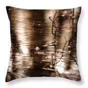Rain Drops On Water Throw Pillow