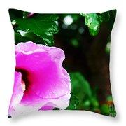 Rain Kissed Flower Throw Pillow