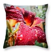 Rain Kissed Lilly Profile 2 Throw Pillow