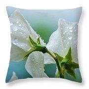 Rain On Sweet Peas Throw Pillow