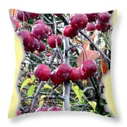Rain On The Crab Apples Throw Pillow