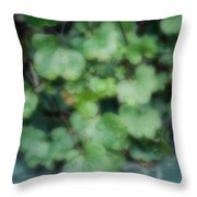Rain On The Ivy Throw Pillow