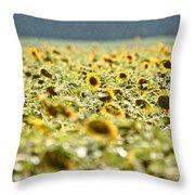 Rain On The Sunflowers Throw Pillow