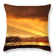 Storm At Dusk 2am-108330 Throw Pillow