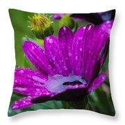 Rain Shower Throw Pillow