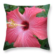 Rain Soaked Hibiscus Throw Pillow