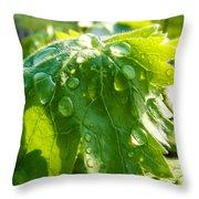 Rain Soaked Leaf Throw Pillow