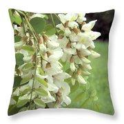Rain-spangled Locust Flowers Throw Pillow