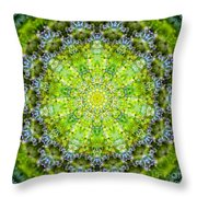 Lluvia Mandala Throw Pillow