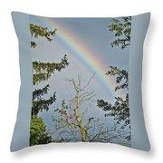 Rainbow 2 Throw Pillow