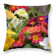 Rainbow Alive Throw Pillow