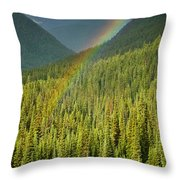 Rainbow And Sunlit Trees Throw Pillow