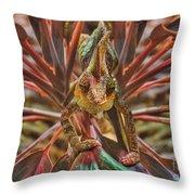 Rainbow Chameleon Throw Pillow