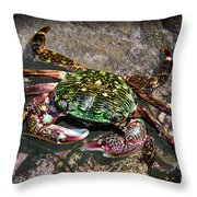 Rainbow Crab Throw Pillow