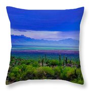 Rainbow Desert Landscape Throw Pillow