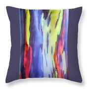Rainbow Eucalyptus 2 Throw Pillow
