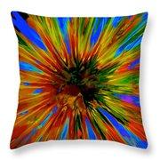 Rainbow Exuberance Throw Pillow