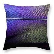 Rainbow Feather Throw Pillow