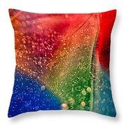 Rainbow Fishtail Throw Pillow
