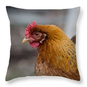 Rainbow Hen Throw Pillow