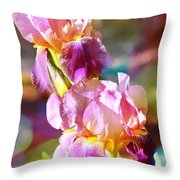 Rainbow Irises Throw Pillow