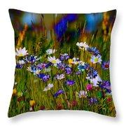 Rainbow Meadow Throw Pillow